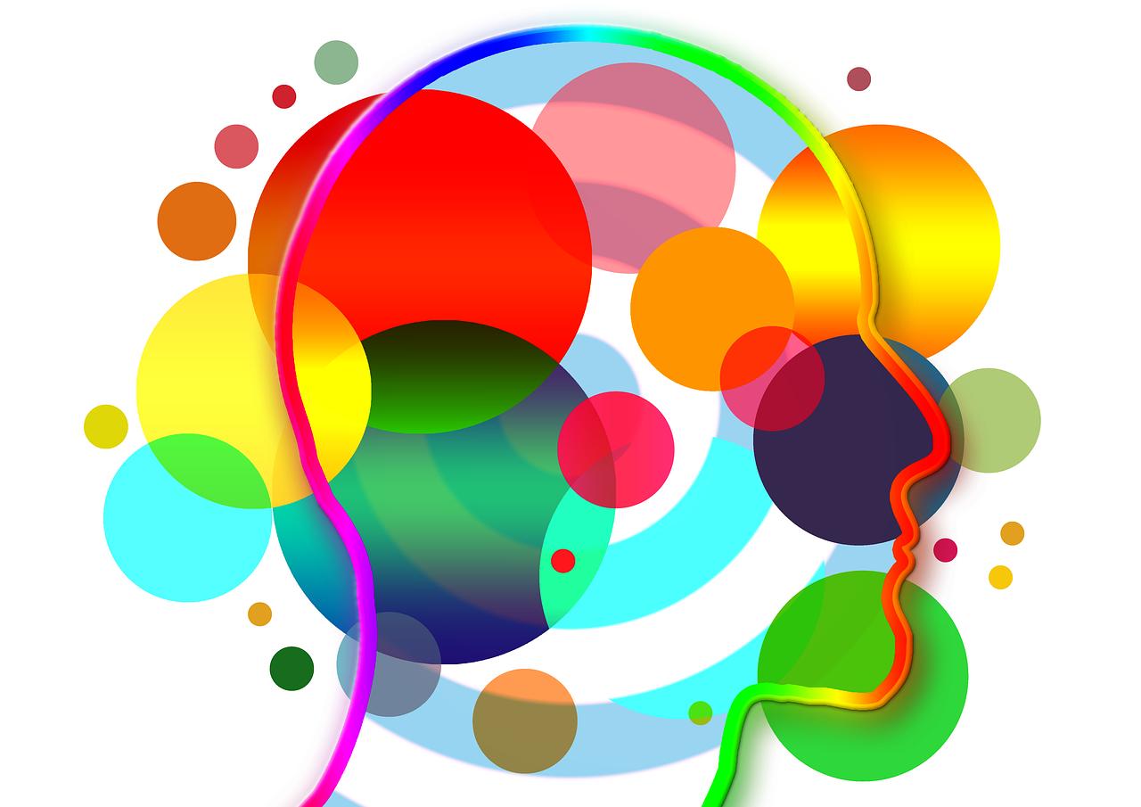 que-es-plasticidad-organizacional